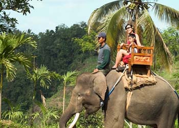 Bali jungle elephant ride