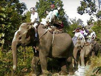 Thai hill tribe elephant ride