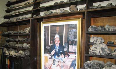 Dr. Cabrera's Stone Museum