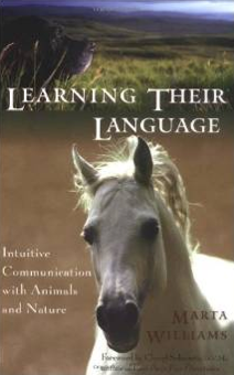 learning-their-languiage