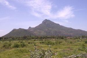 A_view_of_Thiruvanamalai_Mountain-web