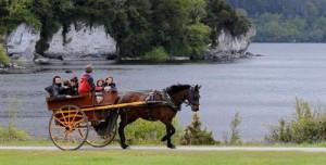 Killarney horse cart